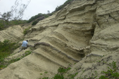 Interbedded-Volcanic-Ash-Bands-and-Pelagic-Clays-Oceanics-Formation