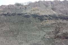 Oil-Filled-Sands-Lower-Scotlands
