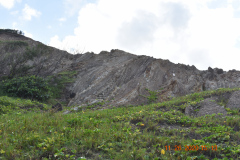 Steeply-dipping-beds-with-gypsum-crystals-Murphys-Member