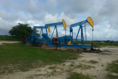 Woodbourne-Oil-Field